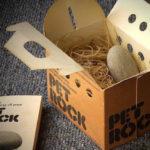 Камни-питомцы: странная идея на миллионы