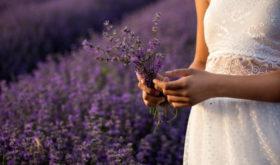 Свежесть, нежность, кокетство: ароматы, с которыми хочется встречать теплые деньки