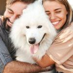 Обнимать лучше, чем смотреть. Новые данные о пользе собак для здоровья
