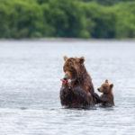 НаКурильском озере возобновили прием туристов