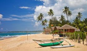 Шри-Ланка запустит выдачу шестимесячных виз