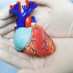 Что нужно знать об инфаркте миокарда?